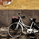Как правильно выбирать велосипед