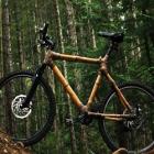 Зарядка портативной электроники бамбуковым велосипедом